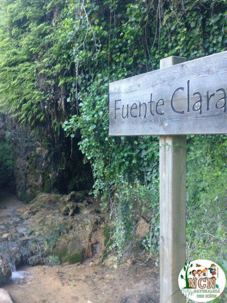 Fuente Clara