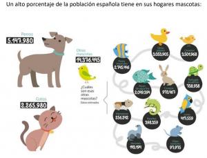 Mascotas en España